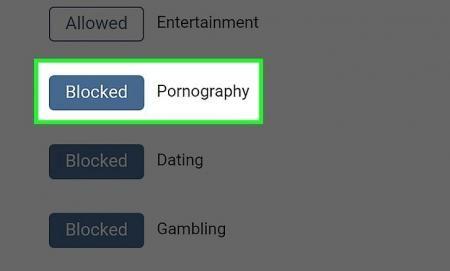 Cara Blokir Konten Porno6