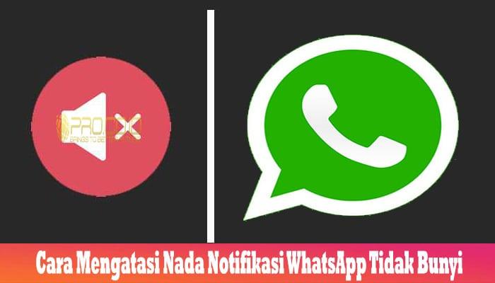 Cara Mengatasi Nada Notifikasi WhatsApp Tidak Bunyi